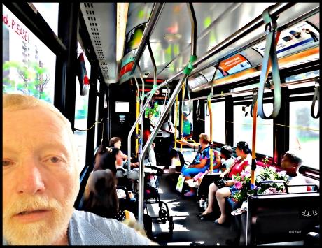 Bus Fare v1